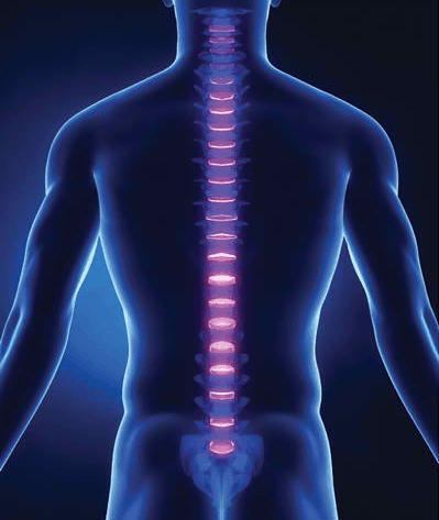 Why Chiropractors Promote Good Posture?